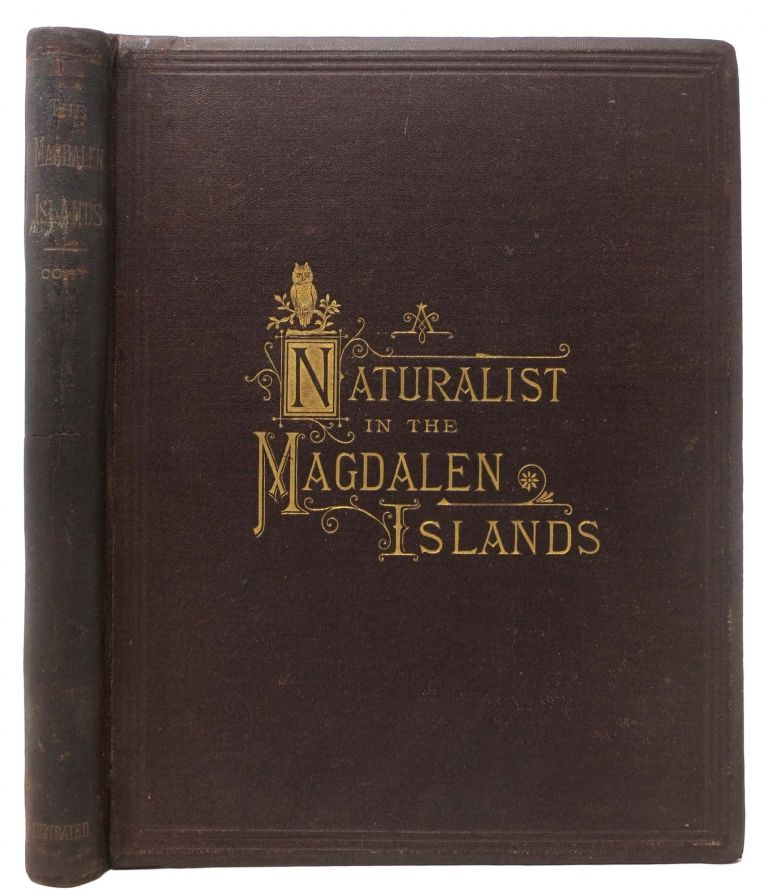 A NATURALIST In The MAGDALEN ISLANDS; Giving A Description of the Islands and List of the Birds Taken There, with Other Ornithological Notes. Charles B. Cory.