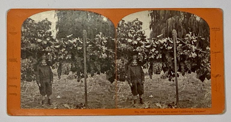 No. 172. WON'T YOU HAVE SOME CALIFORNIA GRAPES?; Views of American Scenery. California Stereoview, . . - Photographer Reilly, ohn, ames. 1838 - 1894.