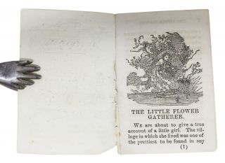 The LITTLE FLOWER - GATHERER. [cover title].