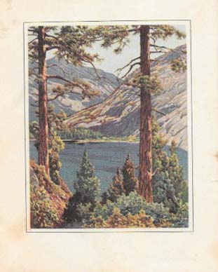 A COLLECTION Of EIGHT MENUS From CAMP CURRY, YOSEMITE NATIONAL PARK. Restaurant Menu - Yosemite National Park.