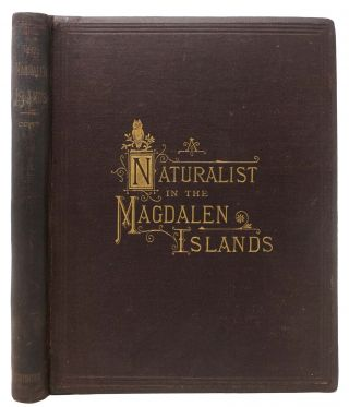 A NATURALIST In The MAGDALEN ISLANDS; Giving A Description of the Islands and List of the Birds...