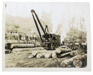 CACHE Of NINE LARGE-FORMAT PHOTOGRAPHS DEPICTING The LUMBERING INDUSTRY In The PACIFIC NORTHWEST.