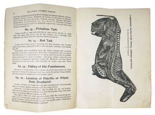 The HORSE OWNER'S FRIEND. A Treatise on Diseases of The Horse, Cattle and Fowl.